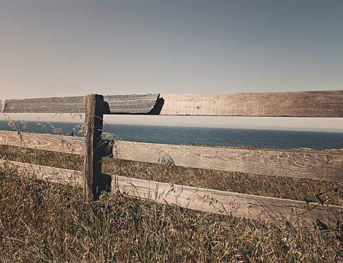 Grundstücksgrenzen und Nachbarschaftsrecht
